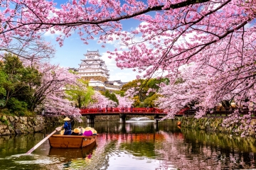 Best Tour 7 City Sakura Japan - 7D4N by ANA Airlines